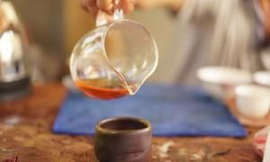 秘境中的茶王树镇沅千家寨2020年普洱茶区茶山行